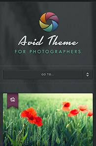 Avid theme screenshot on the iPhone.