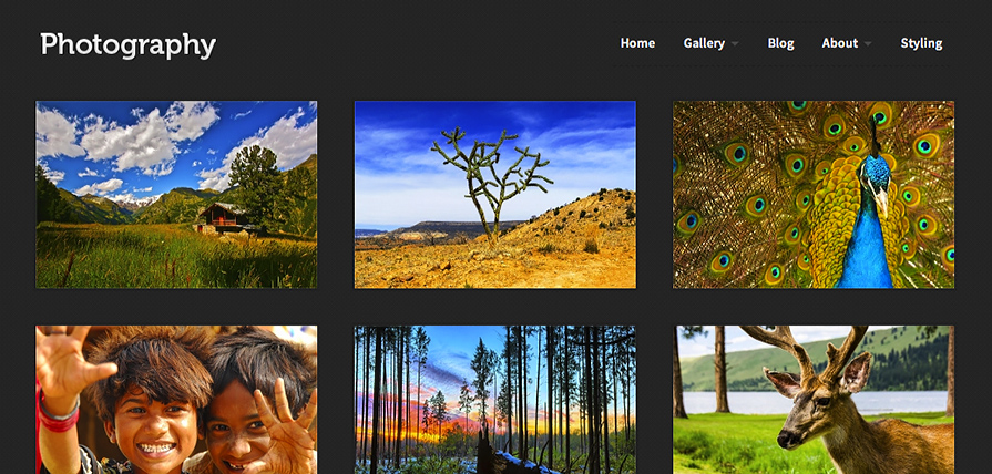 Photography theme screenshot in a desktop browser.