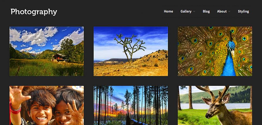Photography theme screenshot in a desktop browser.